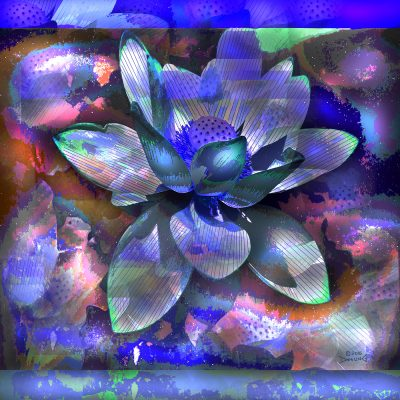 Blue Lotus 2016