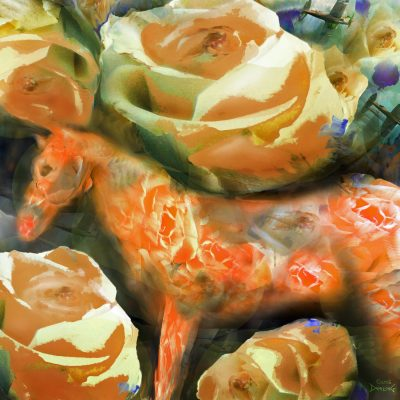 Tangerine Horse Blues with Sunset Roses 2016