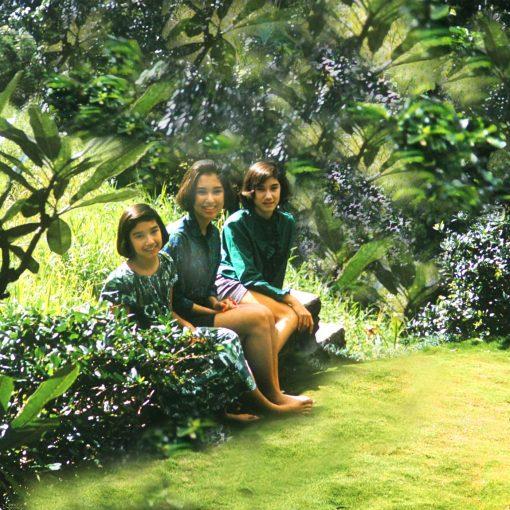 Manoa Memories 6.6 2017 Manoa Sisters